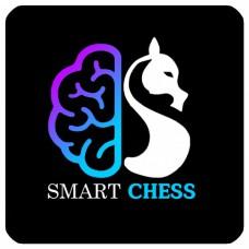 1-12. Полный видеокурс Навыки необходимые для достижения успеха в шахматах