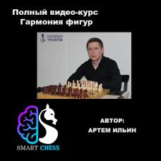 Артем Ильин. Полный видео-курс Гармония фигур