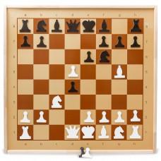Демонстрационные шахматы магнитные 73X73 см